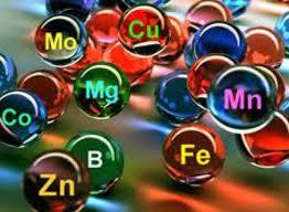 микроэлементы